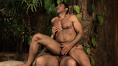 Hairy dude sucks his partner's cock before sticking it deep in his hungry ass