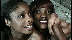 Two famished bitches are torn apart by big ebony piston with huge bangers