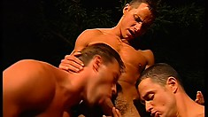 Three gay guys secretly watch the hot threesome and join them