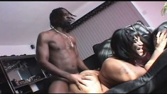 Chunky ebony girl with a big round booty can't resist a huge black rod